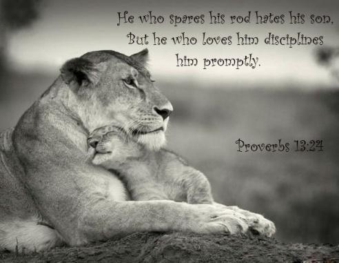 Proverbs 13:24